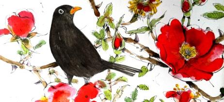 sarah-gabriel-blackbird